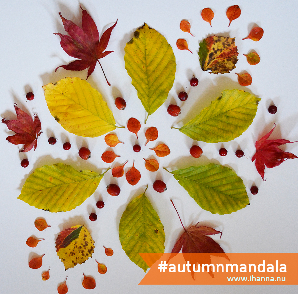 iHanna's Autumn Mandala, October 2013. Copyright Hanna Andersson