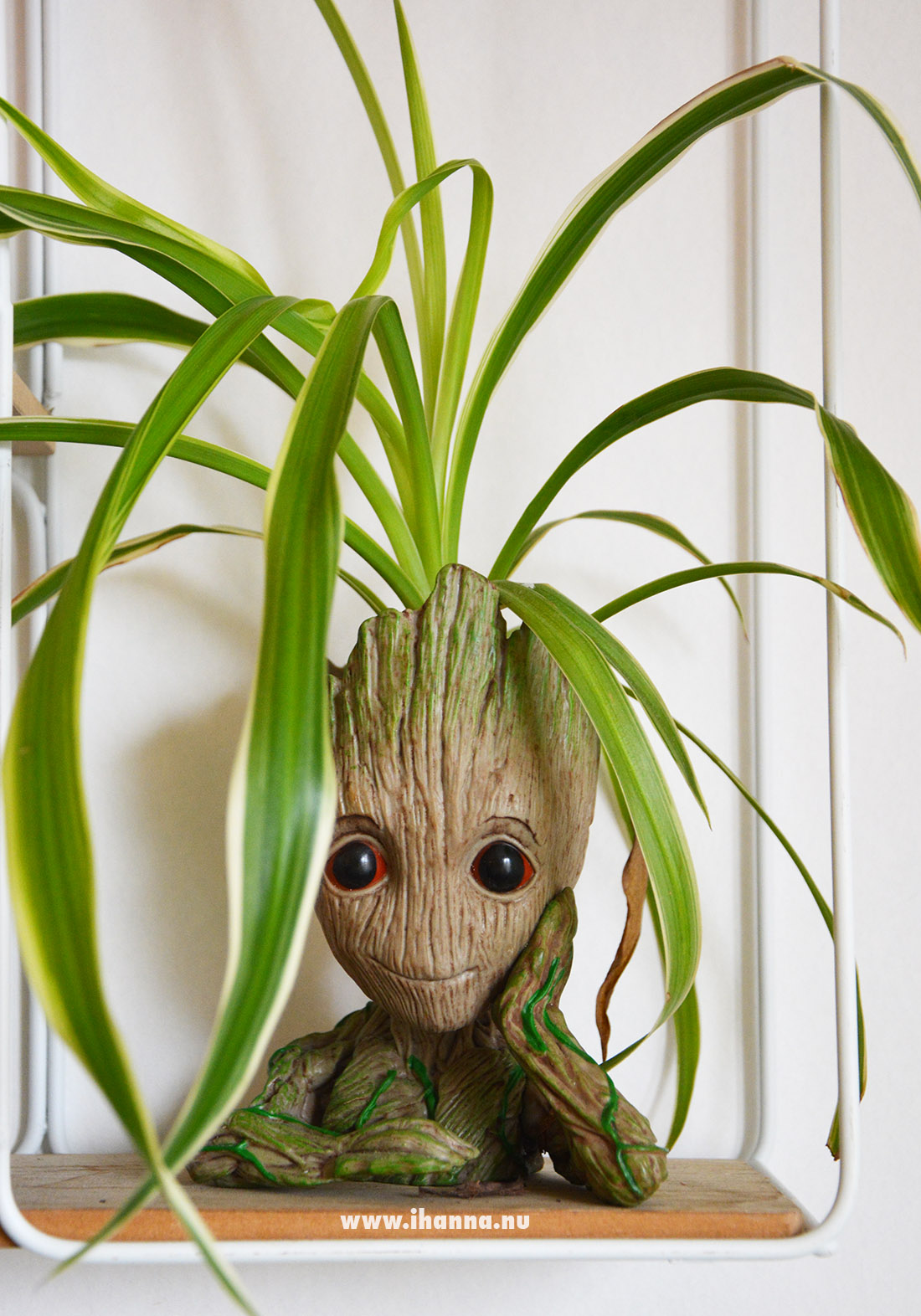 Groot planter in iHannas home #greenery Photo Copyright Hanna Andersson